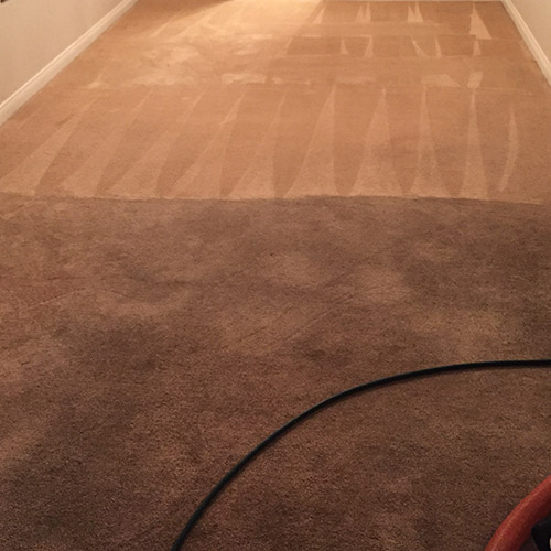 TNT Carpet Cleaning