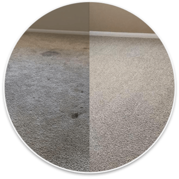 TNT Carpet Before and After